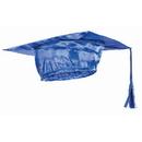 Forum Novelties BB80093 Blue Graduation Child Cap - One-Size