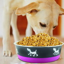 Boomer N Chaser BNC-10005-4 Stainless Steel Pet Bowl with Anti Skid Rubber Base and Dog Design, Large, Gray and Pink-Set of 4