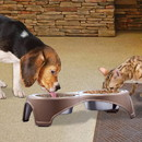 Boomer N Chaser BNC-14021-2 Plastic Framed Double Diner Pet Bowl in Stainless Steel, Large, Gold and Silver-Set of 2