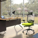 The Urban Port UPT-230089 Adjustable Headrest Ergonomic Office Swivel Chair with Padded Seat and Casters, Green and Gray