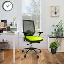 The Urban Port UPT-230095 Adjustable Mesh Back Ergonomic Office Swivel Chair with Padded Seat and Casters, Green and Gray