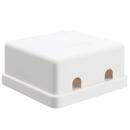 CableWholesale 300-314DE Blank Surface Mount Box for Keystones, 2 Hole, White