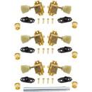 Gotoh P-GGT-73X Tuners - Gotoh, SD510, gold, keystone knob, 3 per side