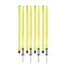 Champion Sports APSET Outdoor Agility Pole Set