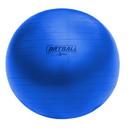 Champion Sports BRT42 42 cm Fitpro BRT Training & Exercise Ball