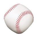 Champion Sports BS5 Soft Sport Baseball