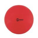 Champion Sports FP65 65Cm Fitpro Training/Exercise Ball