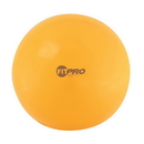 Champion Sports FP75 75Cm Fitpro Training/Exercise Ball
