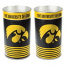 Iowa Hawkeyes 15