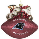 Carolina Panthers 5 1/2