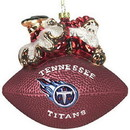 Tennessee Titans 5 1/2
