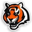 Cincinnati Bengals 12
