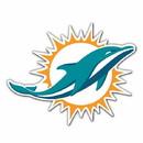 Miami Dolphins 12