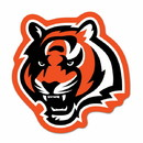 Cincinnati Bengals Logo on the GoGo