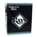 Tampa Bay Rays Gift Bag - Medium