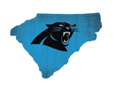 Carolina Panthers Sign Wood Logo State Design