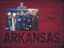 Arkansas Razorbacks Clip Frame Special Order