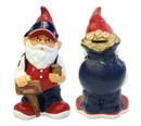 Minnesota Twins Garden Gnome - Coin Bank