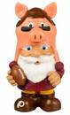Washington Redskins Garden Gnome - Mad Hatter