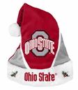 Ohio State Buckeyes Santa Hat Colorblock Special Order