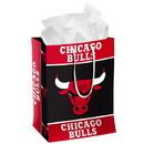 Chicago Bulls Gift Bag Medium