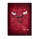Chicago Bulls Blanket 60x80 Raschel Street Design