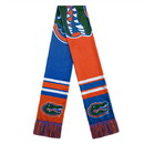 Florida Gators Scarf Colorblock Big Logo Design