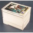 Pro Mold 150ct. Plastic Box