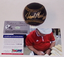 Creative Sports Johnny Bench Autographed Hand Signed Black Official Major League Baseball - PSA/DNA, ABB-BENCH-BLK-HOF-PSA