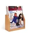 Charnstrom 1346 Wood and Acrylic Magazine Rack - 1 Pocket