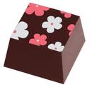 Chocolate World LF003016 Transferts Nora 3