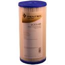 255491-43 / ECP20-BB Pentek Replacement Filter Cartridge