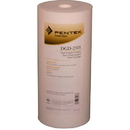 155359-43 / DGD-2501 Pentek Whole House Filter Replacement Cartridge