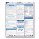 ComplyRight E0076BIL Applicant Area Poster Bilingual