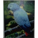 African C2CGREY Grey Canvas Picture