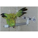 Polly's PPP50748 Pet Products Shower Perch Small