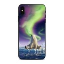 DecalGirl AIPXSM-ARCTICKISS Apple iPhone Xs Max Skin - Arctic Kiss (Skin Only)