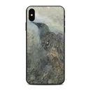 DecalGirl AIPXSM-THERAVEN Apple iPhone Xs Max Skin - The Raven (Skin Only)