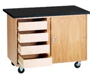 Diversified Woodcrafts 4222KF Mobile Lab 48.00 x 28.00 x 36