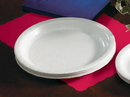Sturdystyle 9 Inch White Ridge Coated Paper Plate 50 Per Pack - 10 Per Case