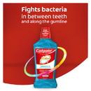 Colgate Total Gum Health Clean Mint Mouthwash 16.9 Fluid Ounce Bottle - 6 Per Case