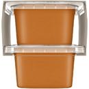 Gerber 1St Foods Butternut Squash Multi Pack 4 Ounce Tubs - 4 Per Pack - 2 Packs Per Case