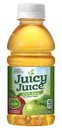 Juicy Juice Apple Juice 10 Fluid Ounces - 24 Per Case