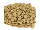 Brown's Best Lentils 20lb, 416130