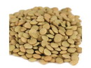 Brown's Best Lentils 50lb, 419240