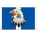 Eagle Emblems F1670 Flag-Korea/Kia Honor (3Ftx5Ft) .