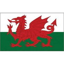 Eagle Emblems F2120 Flag-Wales (2Ftx3Ft) .