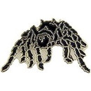 Eagle Emblems P00417 Pin-Spider, Tarantula (1