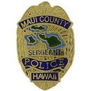 Eagle Emblems P02867 Pin-Pol, Bdg, Hi, Maui (1