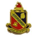 Eagle Emblems P10159 Pin-Army, Dli (Mini) (9/16